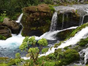 Ein spezielles Paradies ist die kleine, grüne Schlucht Gjain. 26.08.2015