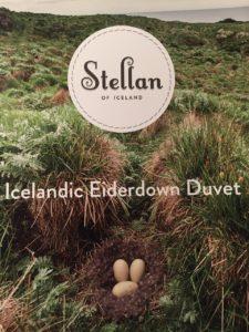 Broschüre des Eiderdaunen-Familienbetriebs Stellan. 27.05.2016