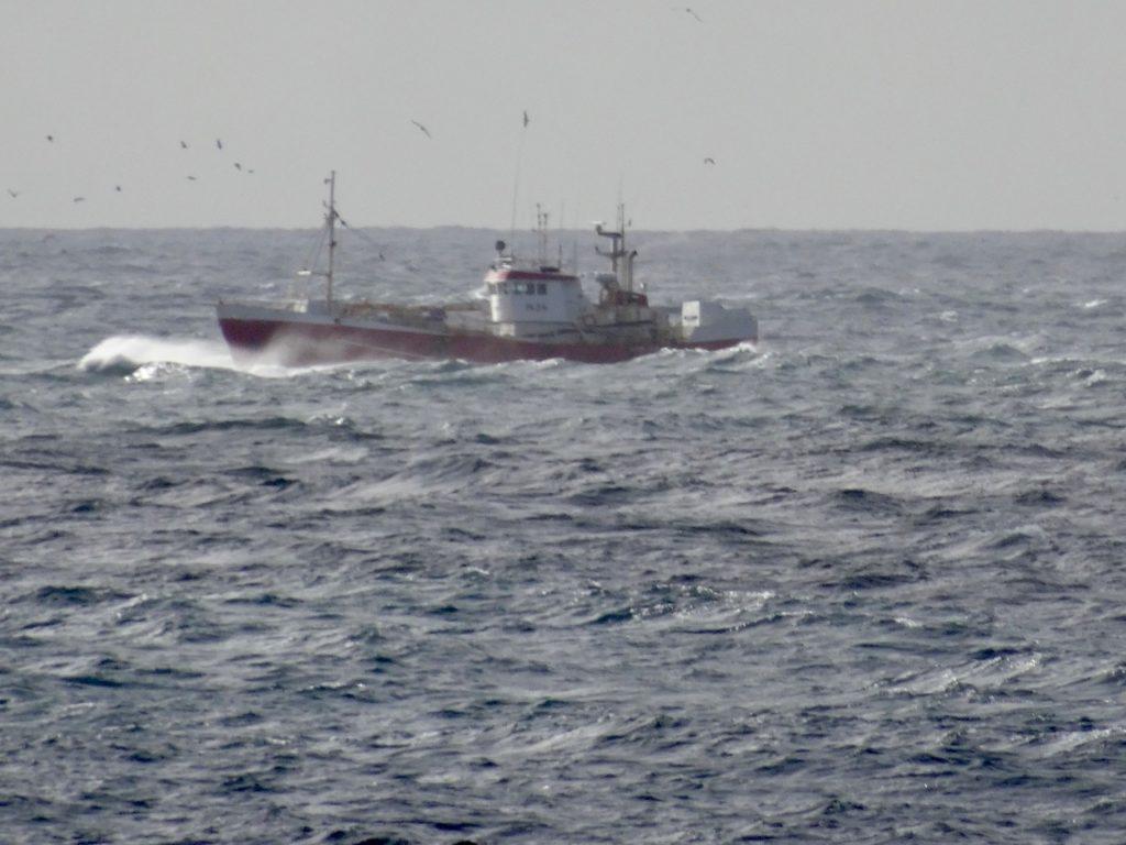 Fisch-Trawler vor Reykjanes im rauen Seegang. 09.09.2016